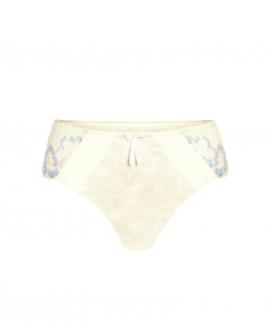 Amoena Arya Brief